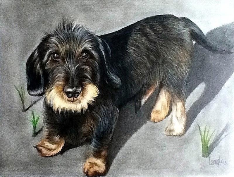 Tierporträts